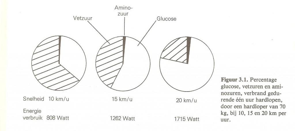 Vetzuren Glucose Aminozuren